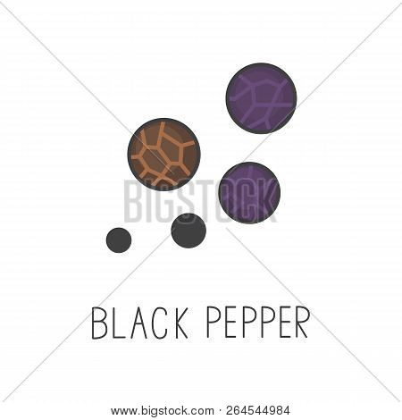 Black Pepper Line Vector Illustration, Cooking Isolated Icon.