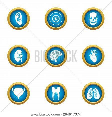 Spleen Icons Set. Flat Set Of 9 Spleen Vector Icons For Web Isolated On White Background