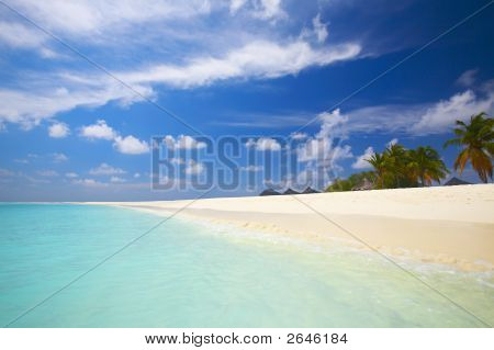 Coral Tropical Beach