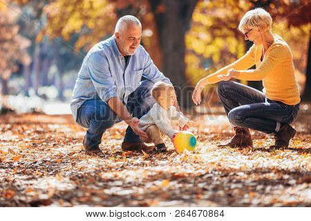 Grandparents And Grandson Together In Autumn Park