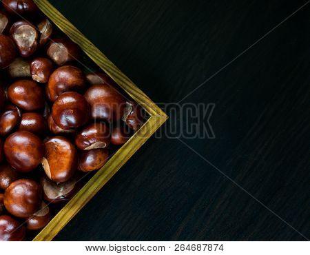 Chestnuts On A Dark Background.