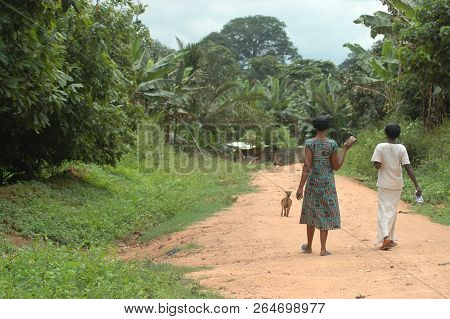 Abetifi, Ghana: July 18th 2016 - Two Ladies Walking Down A Dirt Track In Vegetative Countryside In G