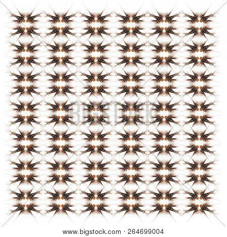 Broadbarred firefish, Pterois antennata, in repeated pattern, in front of white background