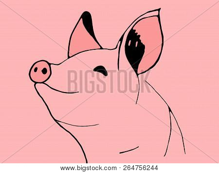 Fun Pig Head Isolated On Pink Background. Simbol Of 2019 Year. Pork Meat. Design Element For Label,e