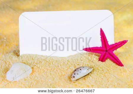 Seashells and starfish on sand picture frame