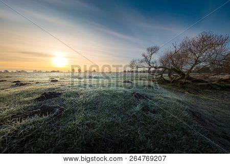 Frosted Autumn Sunrise Near Dudutki Village, Minsk, Belarus