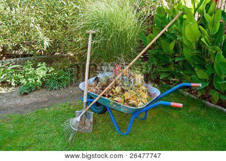 after work on autumnal garden