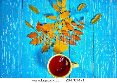 Square Autumn Picture With Cup Of Hot Tea Near Autumn Leaves On Blue Background