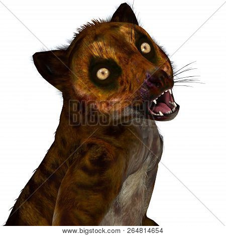 Darwinius Primate Head 3d Illustration - Darwinius Was A Lemur-like Primate That Lived In Germany Du