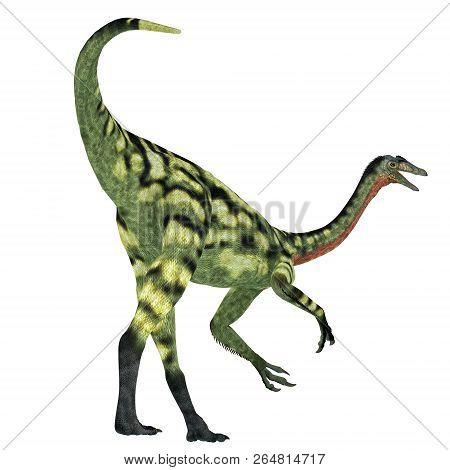 Deinocheirus Dinosaur Tail 3d Illustration - Deinocheirus Was A Carnivorous Theropod Dinosaur That L