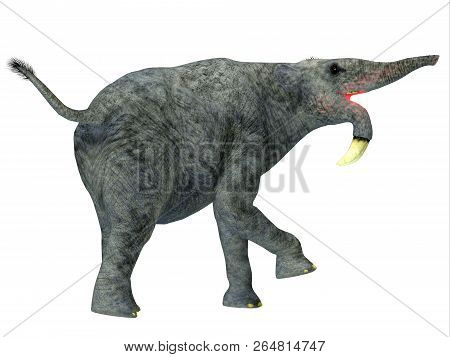 Deinotherium Mammal Tail 3d Illustration - Deinotherium Was An Elephant Mammal That Lived In Asia, A