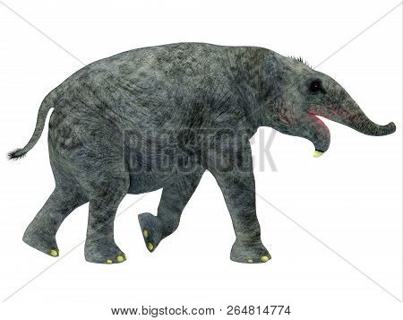 Deinotherium Young Mammal 3d Illustration - Deinotherium Was An Elephant Mammal That Lived In Asia,