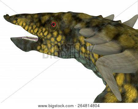Desmatosuchus Dinosaur Head 3d Illustration - Desmatosuchus Was An Armored Herbivorous Dinosaur That
