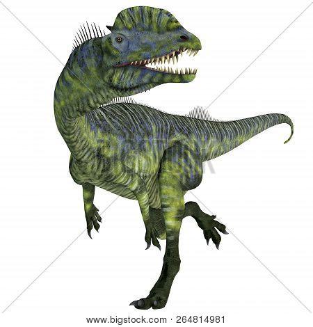 Dilophosaurus Dinosaur Running 3d Illustration - Dilophosaurus Was A Large Carnivorous Theropod Dino