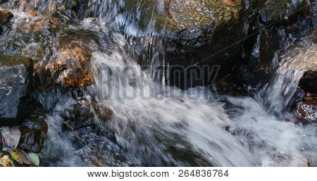 Cascade river lake in the forest