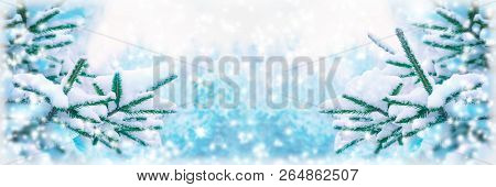 Beautiful Fir Tree Covered Snow, Closeup. Winter Christmas Greeting Card Panoramic Background, Copy