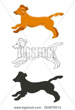 Cocker Spaniel Running In Three Different Styles Isolated On White Background. Side View Of English