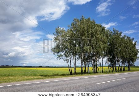 Landscape Of Belarus. Road And Trees And Blue Sky In Road Trip.