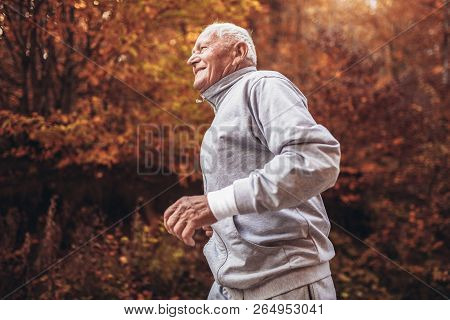 Senior Runner In Nature. Elderly Sporty Man Running In Forest During Morning Workout. Healthy And Ac