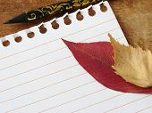 single notepad page and autumnal leaves with pencil poster