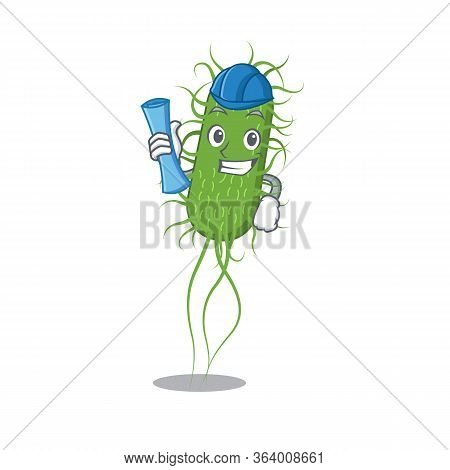 Cartoon Character Of E.coli Bacteria Brainy Architect With Blue Prints And Blue Helmet