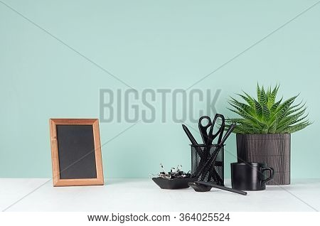 Fresh Home Workspace With Black Stationery, Books, Coffee Cup,  Aloe House Plant, Photo Frame In Ele