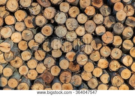 Lumber Stack Up Prepare For Forestry Industry