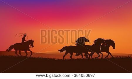 Cowboy Rider Chasing Mustang Horses Herd And Throwing Lasso - Wild West Sunset Landscape Scene Vecto