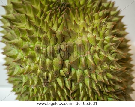 Durian, Thorny Fruit Is A Fruit Of Asia\ngolden Yellow Color Of The Fruit Is Sweet, Soft And Has A P
