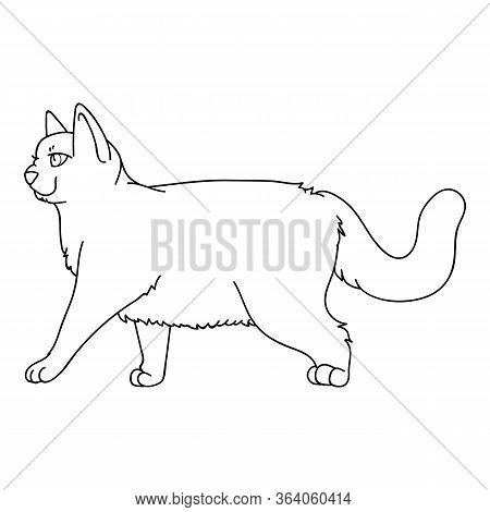 Cute Monochrome Lineart British Shorthair Cat Vector Clipart. Pedigree Kitty Breed For Cat Lovers. P