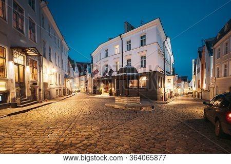 Tallinn, Estonia. Evening View Of Cat Well At Intersection Of Rataskaevu And Dunkri Street. Accordin
