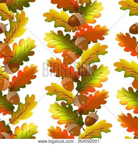 Colored Oak Leaves And Acorns In The Pattern.pattern Of Oak Leaves And Acorns On A White Background.