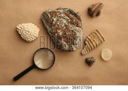 Stone Samples At Geological Laboratory. Geology Rock Laboratory. Laboratory For Analysis Of Geologic