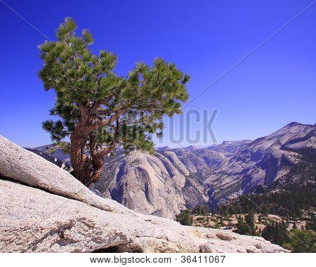 Yosemite from Half Dome