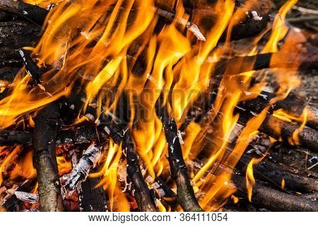 Closeup Of Blazing Campfire, Campfire Burning Logs In Large Orange And Yellow Flames In Close Up Of