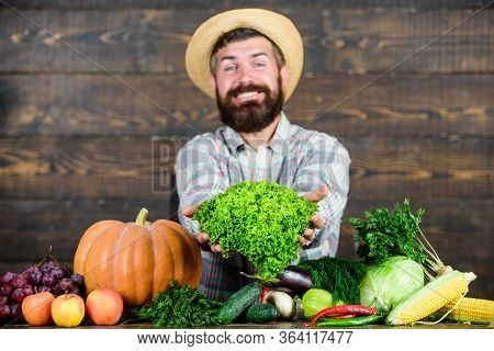 Farm Market Harvest Festival. Man Mature Bearded Farmer Hold Vegetables Wooden Background. Sell Vege