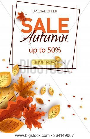 Autumn sale vector background. Autumn sale and discount text in autumn space with maple leaves in white textured background for fall season marketing promotion. Vector autumn illustration Vertical view autumn.