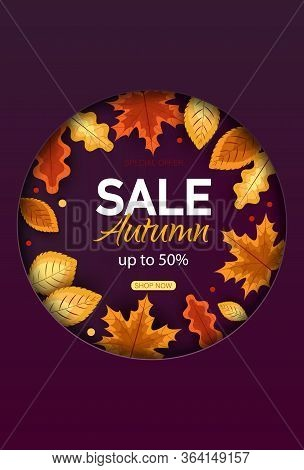 Autumn sale vector background. Autumn sale and discount text in red space with maple autumn leaves in white textured background for fall season marketing promotion. Vector autumn illustration Vertical view.