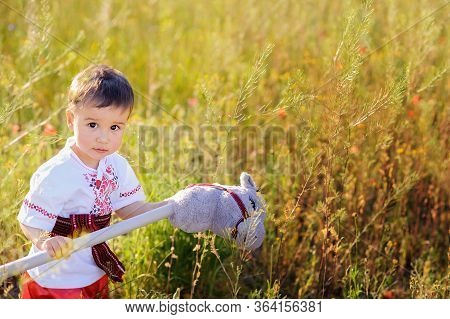Child Kozak In Field. Ukraine's Independence Day. Flag Day. Constitution Day. Boy In Traditional Emb
