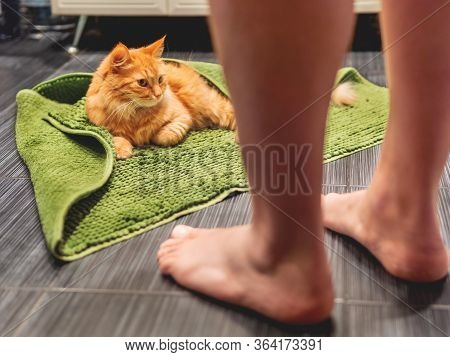Man Entered Bathroom And Saw Cute Ginger Cat Lying On Bathroom Floor, Covered With Green Rug. Fluffy