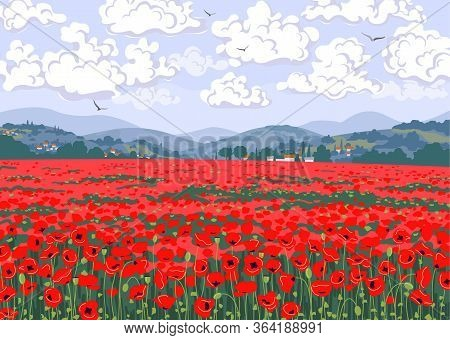 Simple Natural Horizontal Background With Red Blooming Poppies. Tuscany Landscape With Poppy Field,