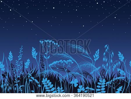 Seamless Horizontal Border Made With Wild Plants In Moonlight. Blue Silhouettes Of Meadow Grass And