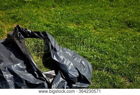 Black Bag Of Mowed Grass On The Lawn. Grass From A Lawn Mower - Animal Feed. Mow The Lawn. Mowing Gr
