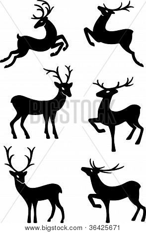 poster of Six deer silhouettes isolated on white background