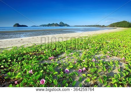 Manow Beach Famous Tourist Attractions Of (wing 5) Military Base In Prachuap Khiri Khan City, Prachu