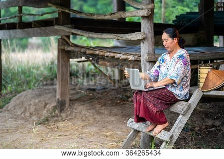 Women In Rural Thailand Are Using Laptop In The Rice Field.