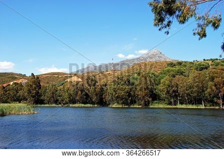 View Across The Lake Towards The Mountains At Nueva Andalucia Nature Reserve, Marbella, Costa Del So