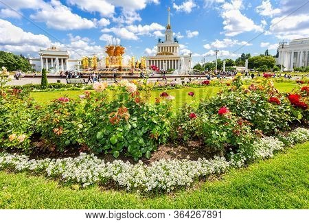 Moscow, Russia - July 8, 2019: Roses Flowers Against The Background Fountain