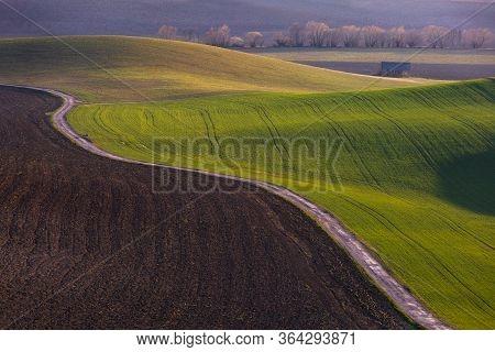 Detail Of A Rural Landscape In Turiec Region, Slovakia.