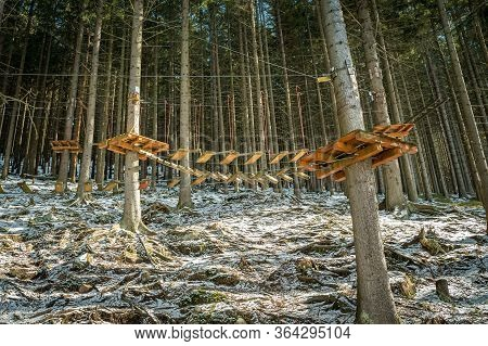 Sky Walk In The Forrest. Rope Or Monkey Park In Winter.